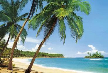 Poster para pared - Ile tropicale Enmarcado de cuadros