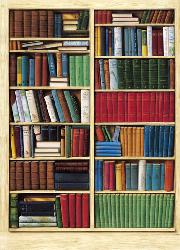 Poster para pared - Bibliotheque Enmarcado de laminas