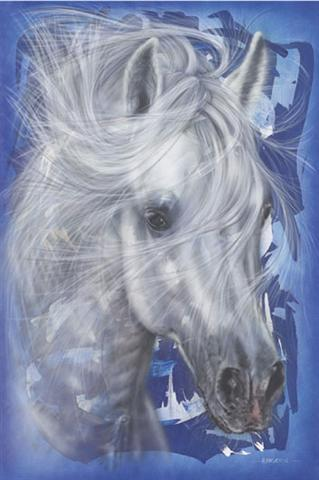 Poster - Horse in blue