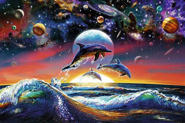 Poster - Dolphin universe