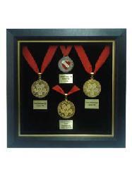 Enmarcado de Medallas II Marcos y Cuadros