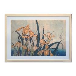 cuadro Saltamonte e iris, Hokusai Marcos y Cuadros
