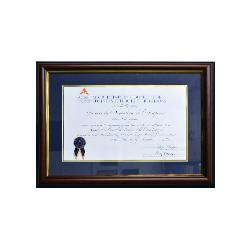 enmarcado diploma Marcos y Cuadros