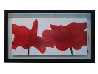 Cuadro - Red III Enmarcado de cuadros
